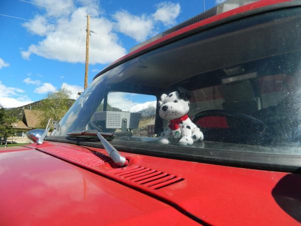 Stuffed Dalmatian on Fire Truck Dashboard